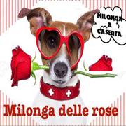 Milonga delle rose al Mambo, venerdì 19 maggio